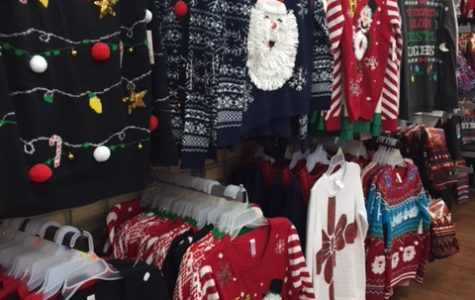 Christmas Sweaters, Pet Costumes, and Holiday Suits, Oh My!
