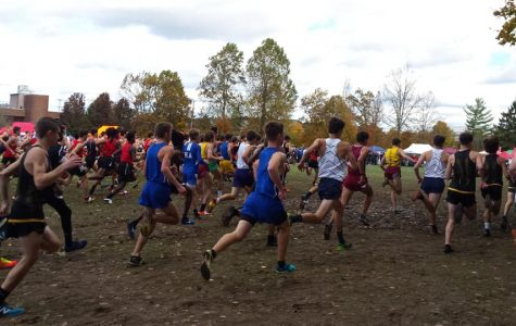 Running Into the Cross Country State Championships